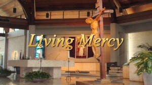 Living Mercy DVDs are now available from EWTN's Video Catalogue!